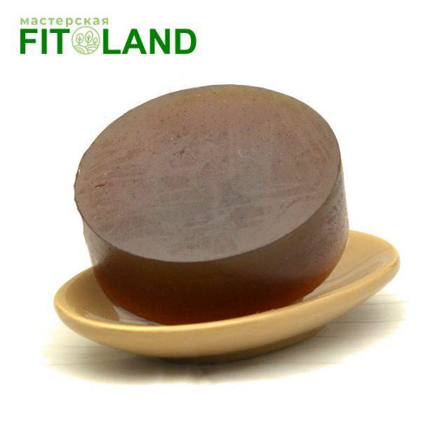 Шампунь с чагой Fitoland Organic